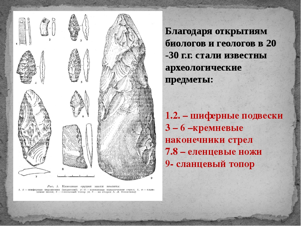 Благодаря открытиям биологов и геологов в 20 -30 г.г. стали известны археолог...