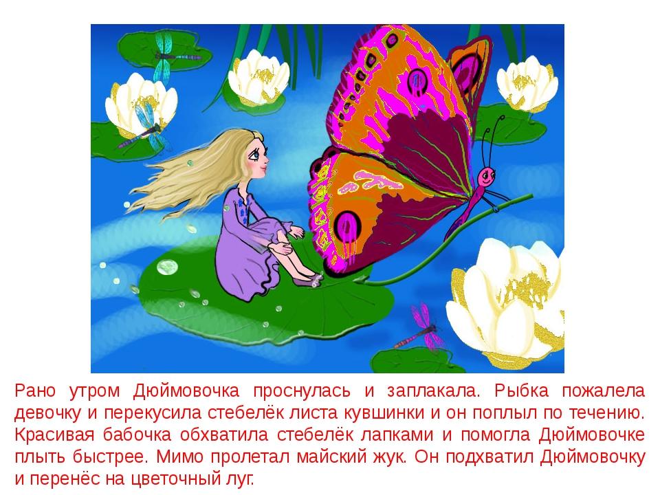 Рано утром Дюймовочка проснулась и заплакала. Рыбка пожалела девочку и переку...