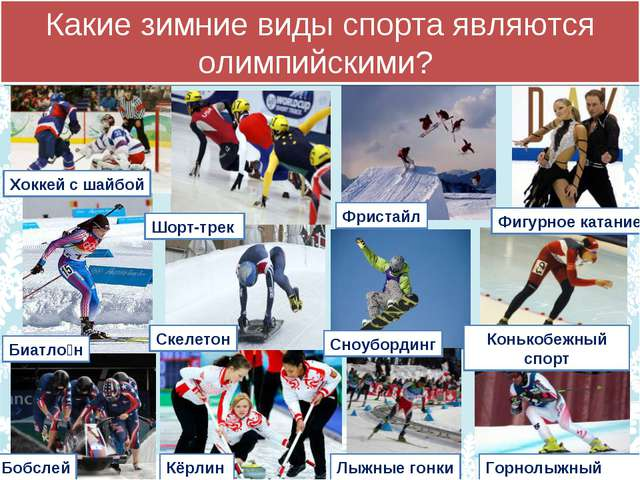 Какие зимние виды спорта являются олимпийскими? Шорт-трек Фристайл Скелетон...