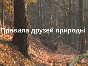 Правила друзей природы