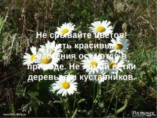 Не срывайте цветов! Пусть красивые растения остаются в природе. Не ломай ветк
