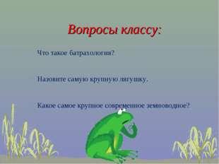 Вопросы классу: Что такое батрахология? Назовите самую крупную лягушку. Како