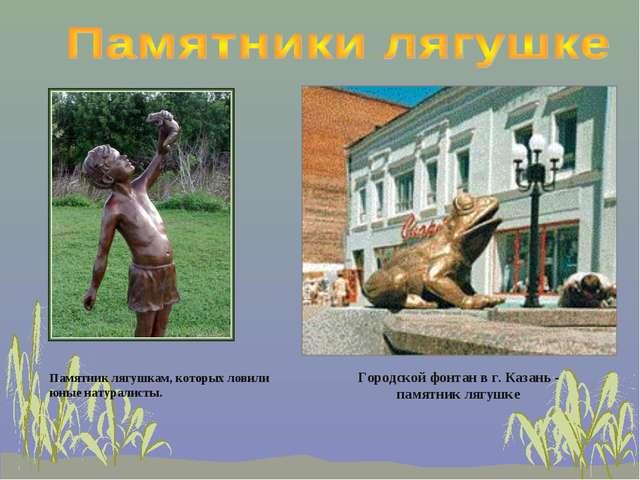 Памятник лягушкам, которых ловили юные натуралисты. Городской фонтан в г. Каз...