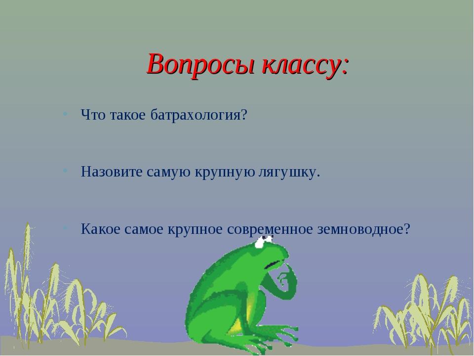 Вопросы классу: Что такое батрахология? Назовите самую крупную лягушку. Како...