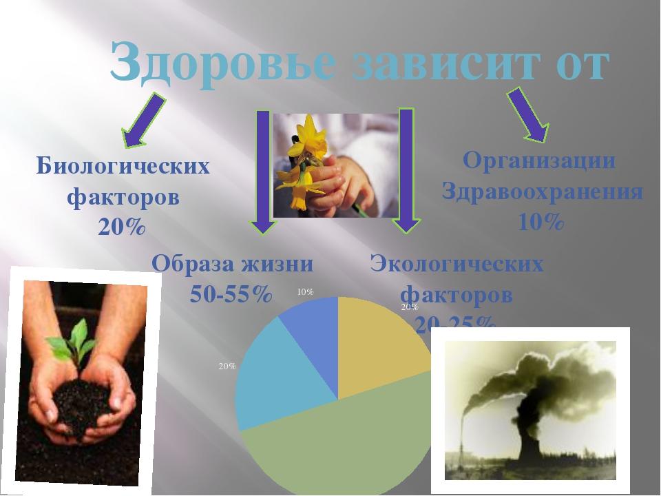 Здоровье зависит от Биологических факторов 20% Образа жизни 50-55% Экологиче...