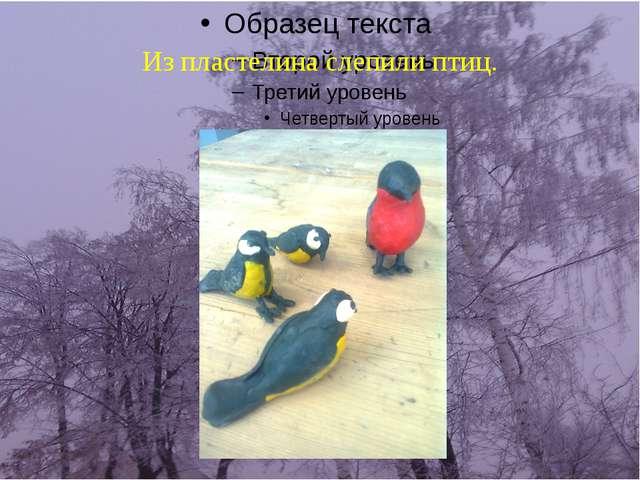 Из пластелина слепили птиц.