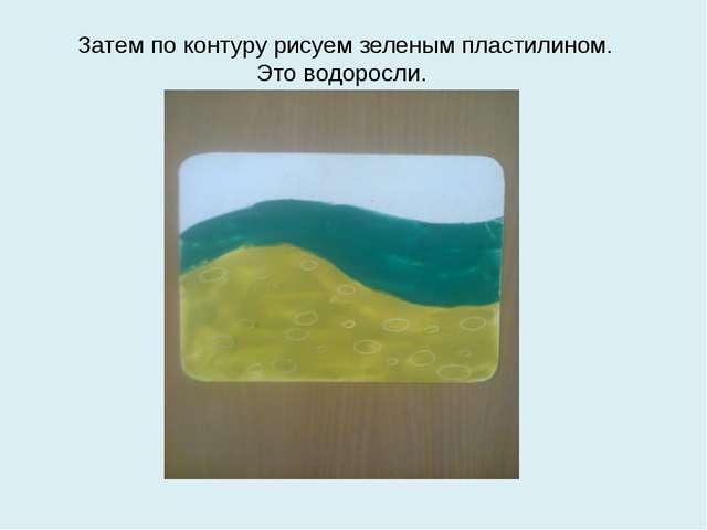 Затем по контуру рисуем зеленым пластилином. Это водоросли.