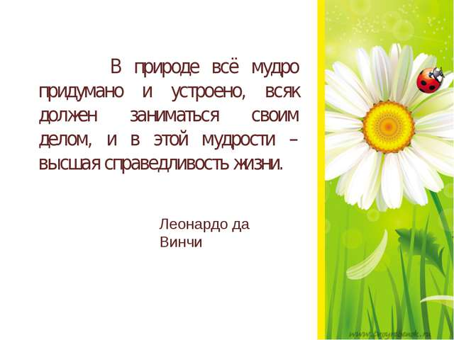 В природе всё мудро придумано и устроено, всяк должен заниматься своим делом...