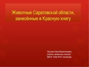 Животные Саратовской области, занесённые в Красную книгу Жукова Нина Валентин