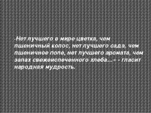 «Нет лучшего в мире цветка, чем пшеничный колос, нет лучшего сада, чем пшенич