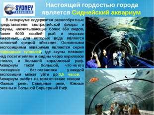 Настоящей гордостью города является Сиднейский аквариум В аквариуме содержатс