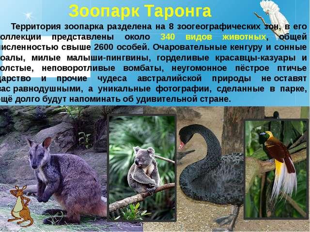 Зоопарк Таронга Территория зоопарка разделена на 8 зоогеографических зон, в е...