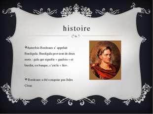 histoire Autrefois Bordeaux s' appelait Burdigala. Burdigala provient de deux