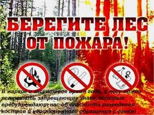В жаркое и засушливое время года, в лесу можно встретить запрещающие знаки, к