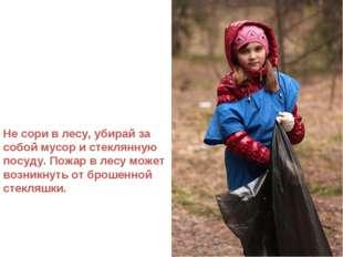 Не сори в лесу, убирай за собой мусор и стеклянную посуду. Пожар в лесу может