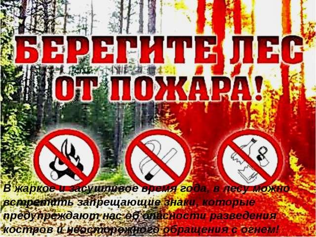 В жаркое и засушливое время года, в лесу можно встретить запрещающие знаки, к...