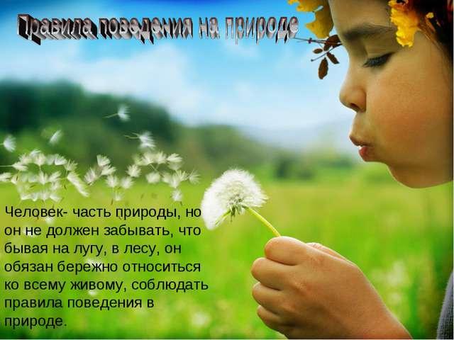 Человек- часть природы, но он не должен забывать, что бывая на лугу, в лесу,...