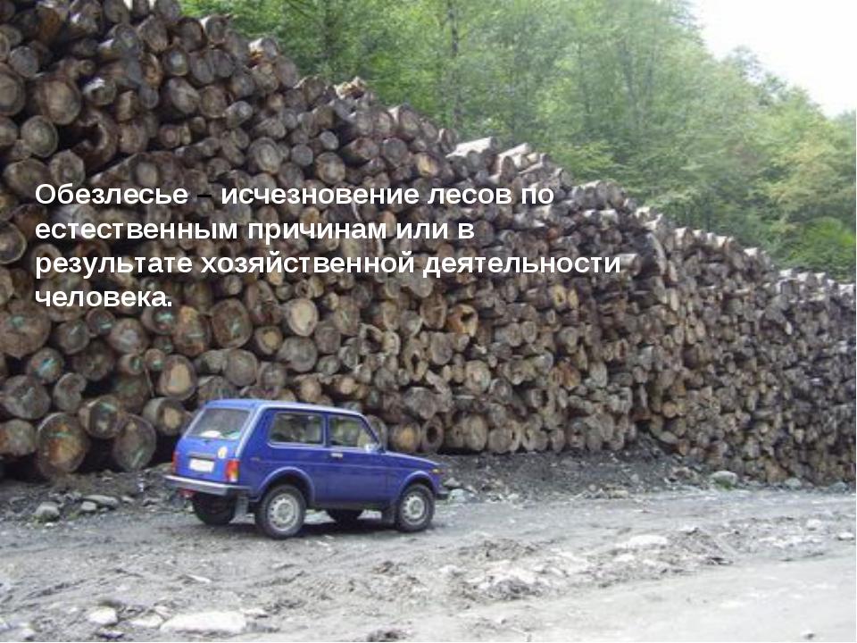 Обезлесье – исчезновение лесов по естественным причинам или в результате хозя...