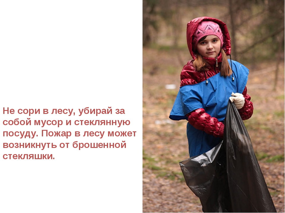 Не сори в лесу, убирай за собой мусор и стеклянную посуду. Пожар в лесу может...