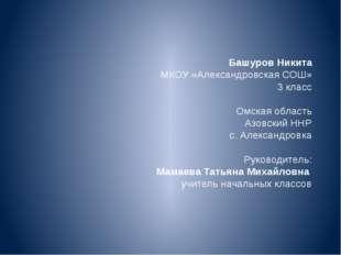Башуров Никита МКОУ «Александровская СОШ» 3 класс Омская область Азовский НН