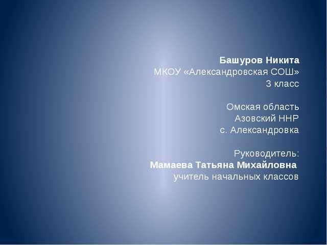 Башуров Никита МКОУ «Александровская СОШ» 3 класс Омская область Азовский НН...