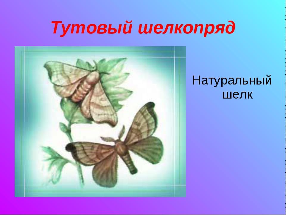Тутовый шелкопряд Натуральный шелк