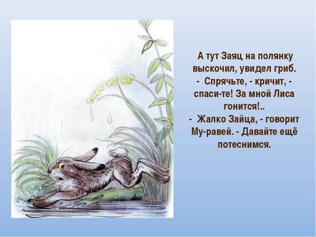 А тут Заяц на полянку выскочил, увидел гриб. - Спрячьте, - кричит, - спаси...