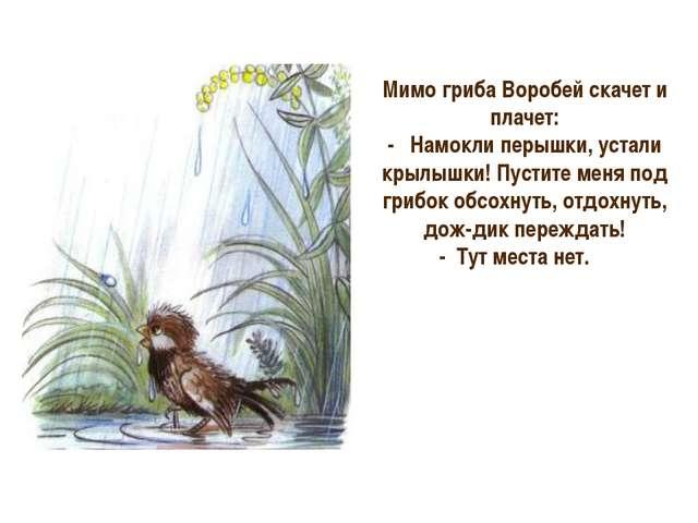 Мимо гриба Воробей скачет и плачет: - Намокли перышки, устали крылышки! Пус...