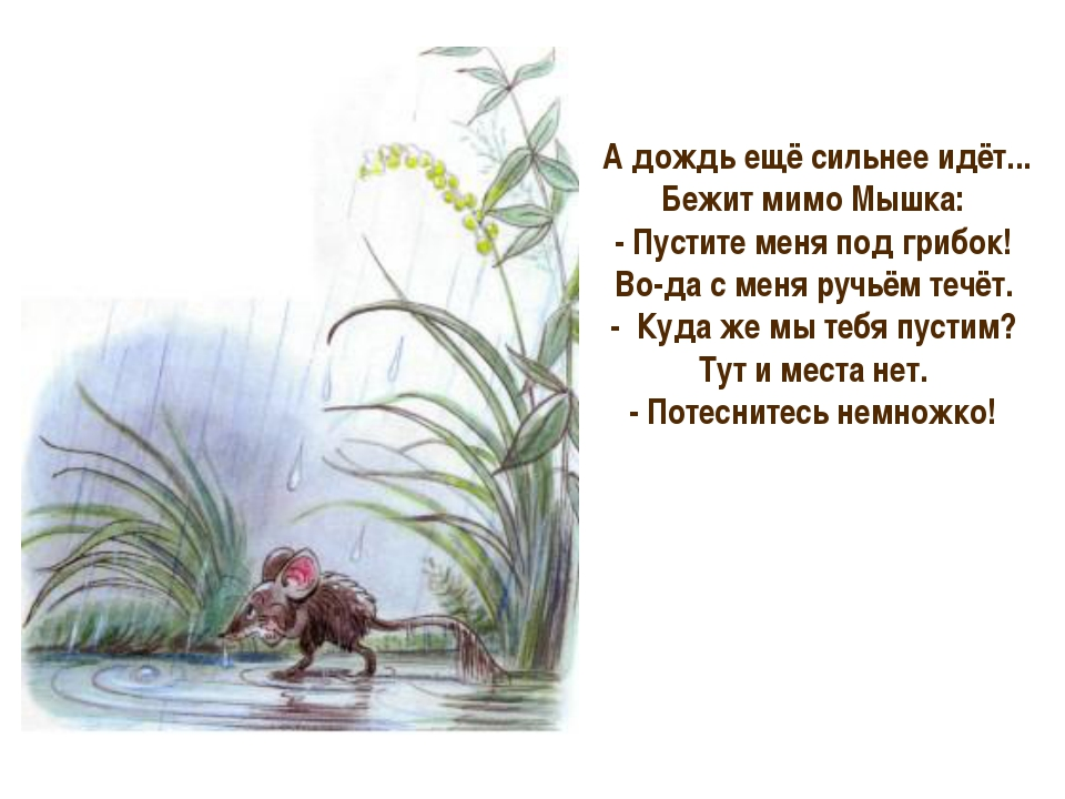 А дождь ещё сильнее идёт... Бежит мимо Мышка: - Пустите меня под грибок! Во...