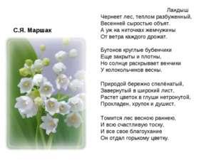 С.Я. Маршак Ландыш Чернеет лес, теплом разбуженный, Весенней сыростью объ