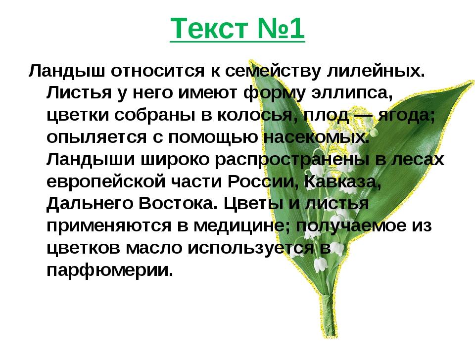 Текст №1 Ландыш относится к семейству лилейных. Листья у него имеют форму элл...