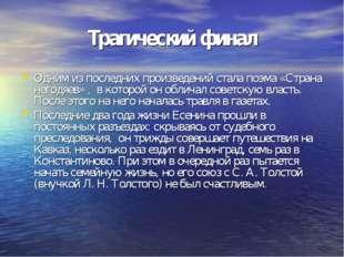 Одним из последних произведений стала поэма «Страна негодяев» , в которой он
