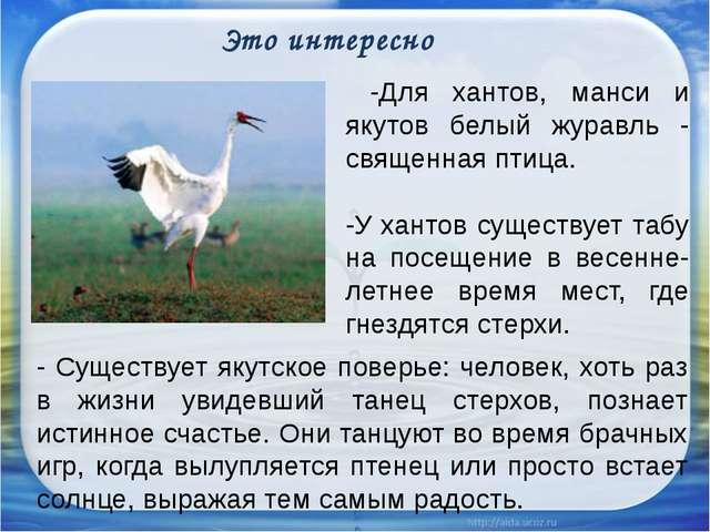 Это интересно -Для хантов, манси и якутов белый журавль - священная птица. -...