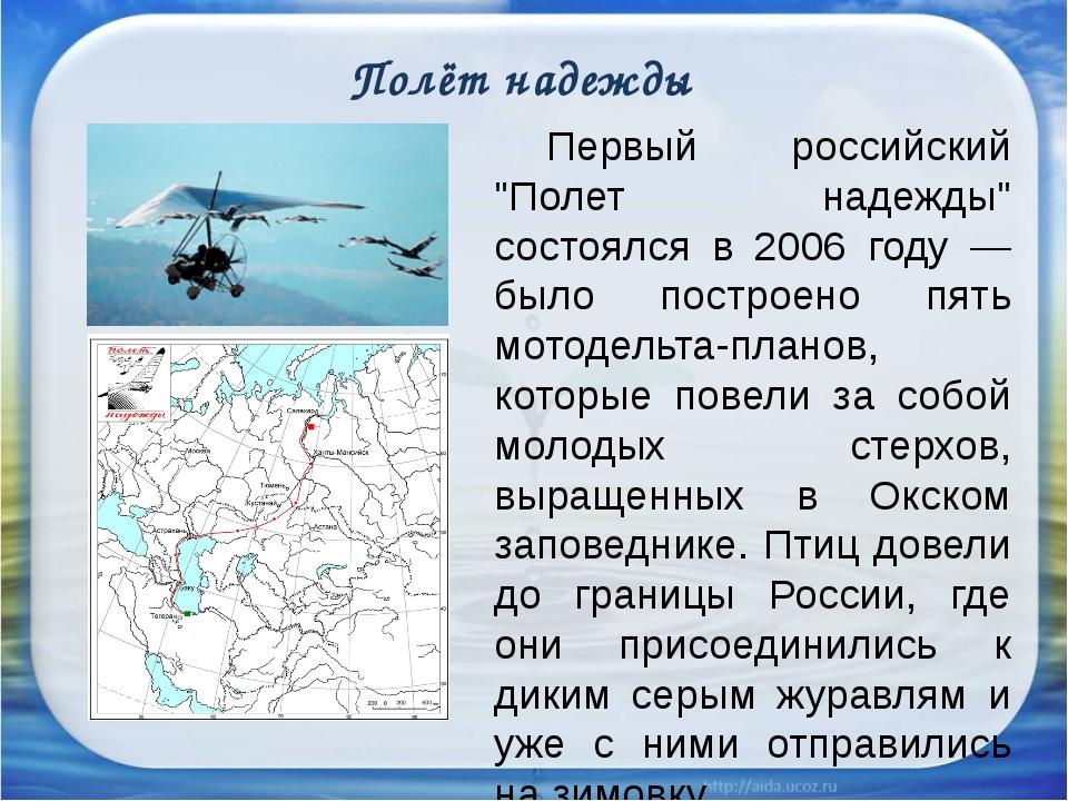 """Полёт надежды Первый российский """"Полет надежды"""" состоялся в 2006 году — был..."""