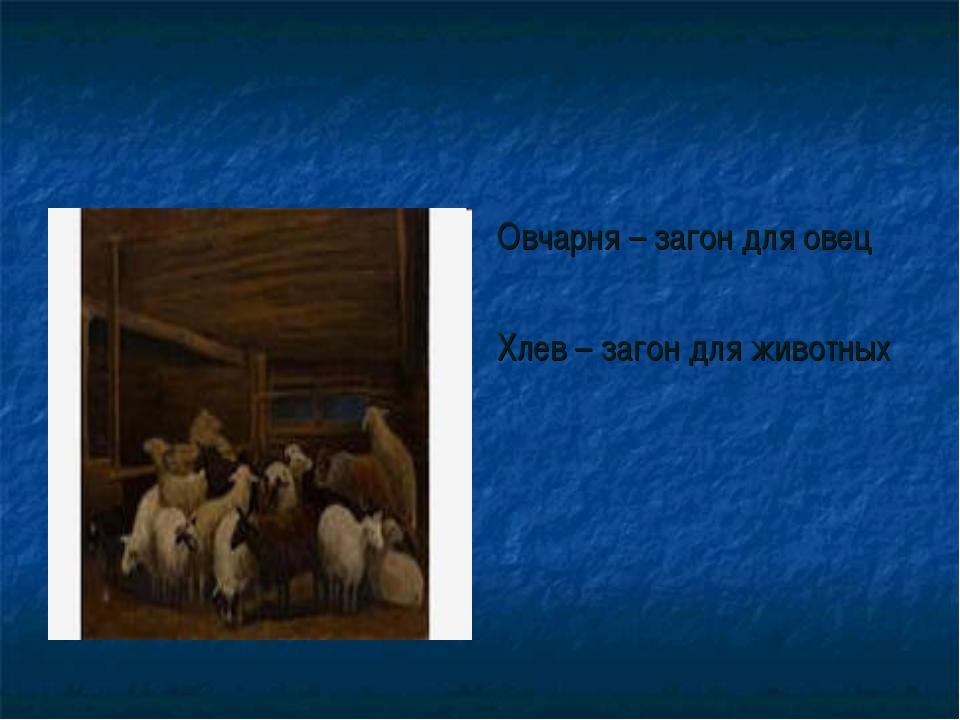 Овчарня – загон для овец Хлев – загон для животных