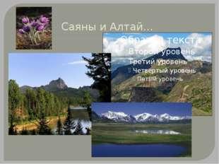 Саяны и Алтай…