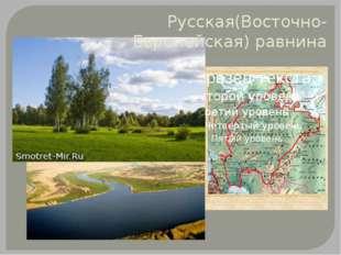 Русская(Восточно-Европейская) равнина