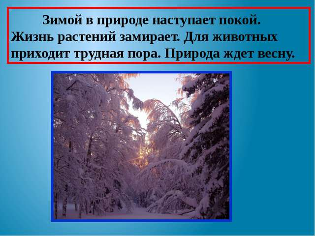 Зимой в природе наступает покой. Жизнь растений замирает. Для животных прихо...