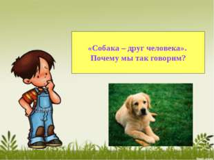 «Собака – друг человека». Почему мы так говорим?