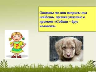 Ответы на эти вопросы ты найдешь, приняв участие в проекте «Собака – друг чел