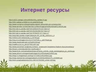 Интернет ресурсы http://cs622.userapi.com/u99844109/a_4a4dec37.jpg http://i05