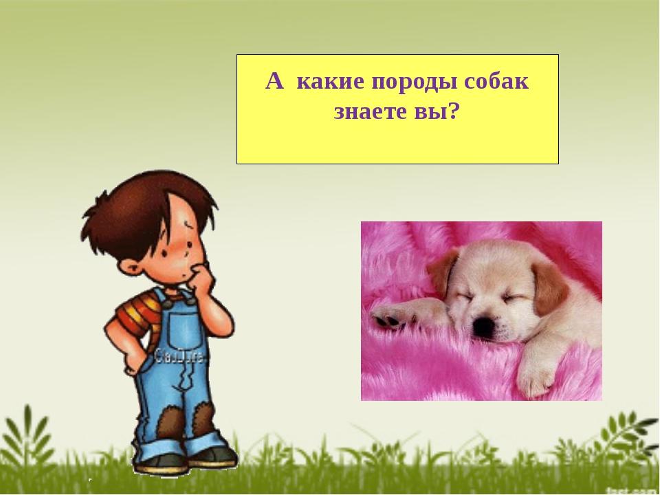 А какие породы собак знаете вы?