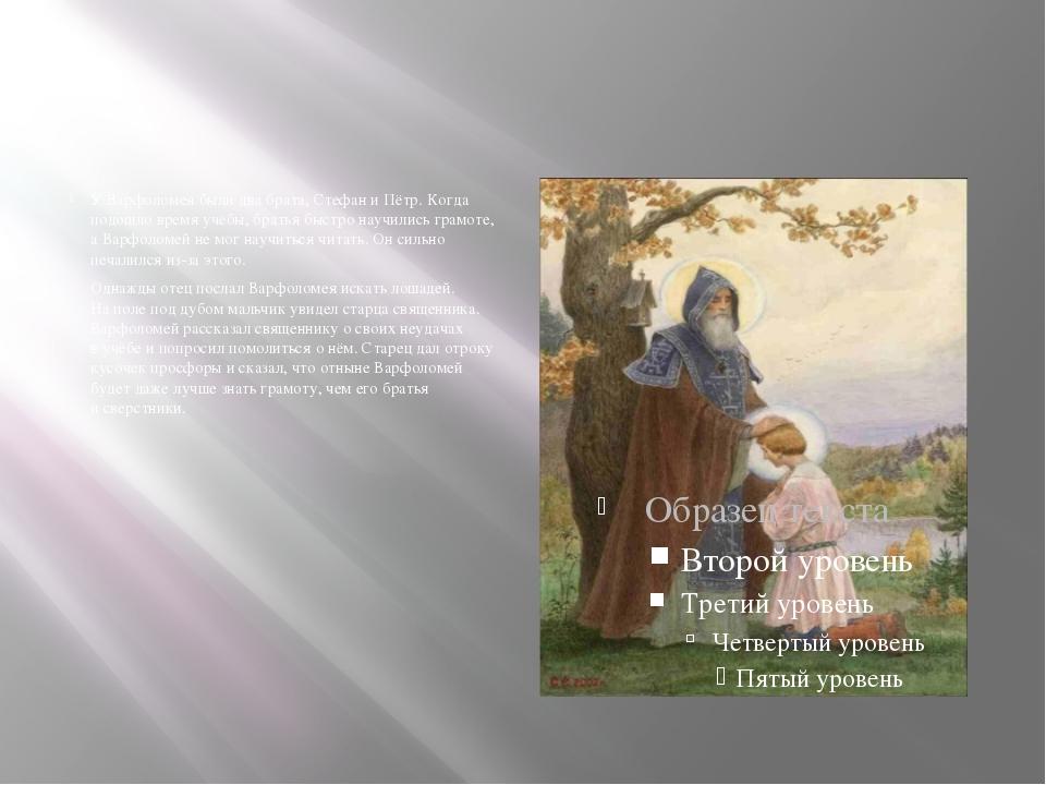 УВарфоломея были два брата, Стефан иПётр. Когда подошло время учёбы, брать...