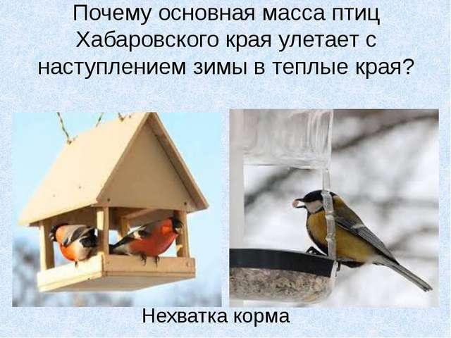 Почему основная масса птиц Хабаровского края улетает с наступлением зимы в те...