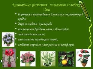 Комнатные растения помогают человеку. Они борются с негативным влиянием окруж