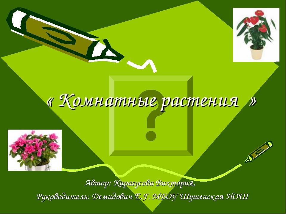 « Комнатные растения » Автор: Карагусова Виктория, Руководитель: Демидович Е...