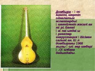 Домбыра – қос ішекті, шертіп ойналатын аспаптардың әшекейленіп жасалған түрі.
