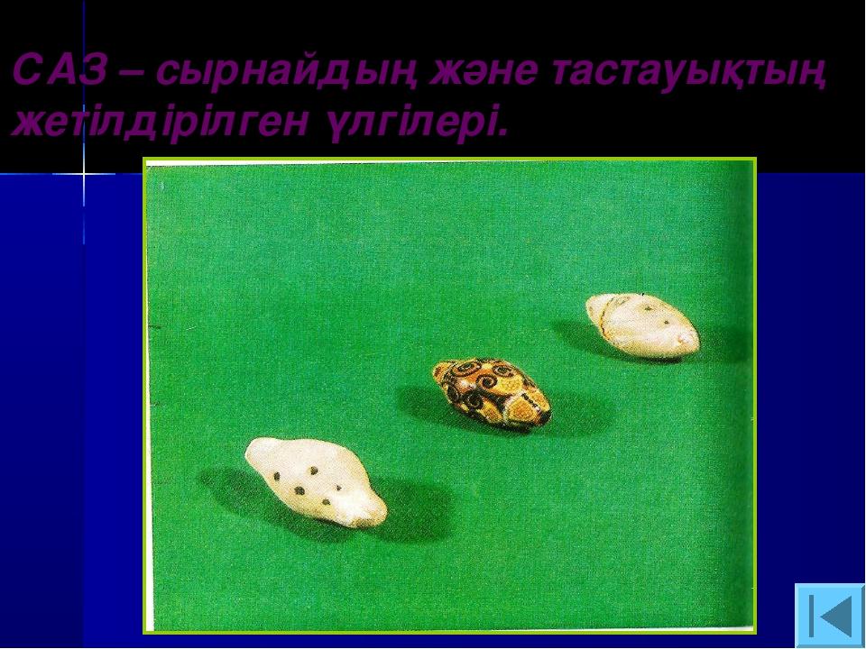 САЗ – сырнайдың және тастауықтың жетілдірілген үлгілері.