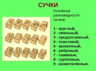 СУЧКИ Основные разновидности сучков: 1 - круглый, 2 - овальный, 3 - продолгов
