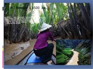 8.Меконг (4500 км.) Меконг – река, являющаяся крупнейшей рекой Индокитайског